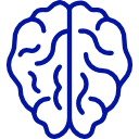 brain(1)